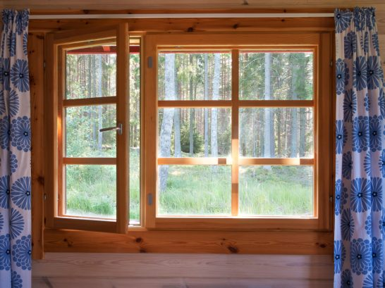 New Window, with woods behind