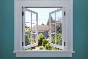 Windows with view to Backyard