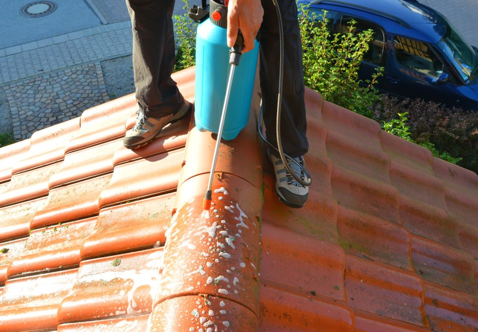 Cleaning Roof Algae