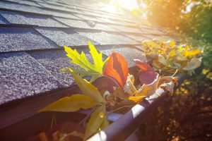 Roof with leaves in the gutter